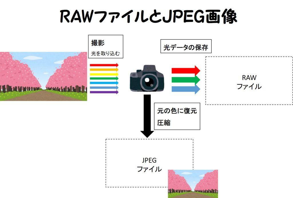 rawファイル